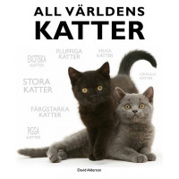 Alla världens katter