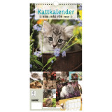 Eivor Rasehorns stora kattkalender 2017